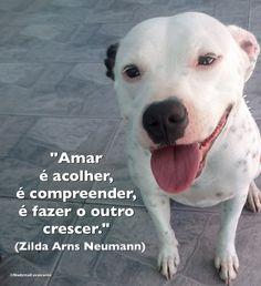 """""""Amar é acolher, é compreender, é fazer o outro crescer."""" (Zilda Arns Neumann)"""