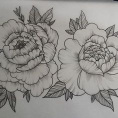 peony tattoo black and white - Google Search
