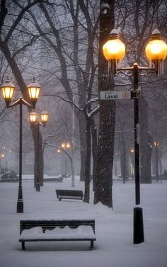 Montreal Winter - St. Louis Square, Le Plateau, Canada (by Hulivili on Flickr)