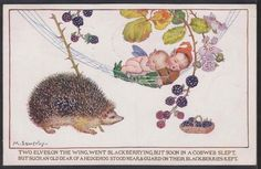 M. SOWERBY card   eBay