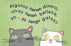 Y yo... Yo tengo gatos!!