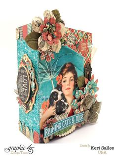 A brilliant Raining Cats & Dogs altered book box by the amazing Keri #graphic45