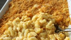 This delicious southern style macaroni and cheese casserole is the perfect comfort food. Creamy cheese and tender noodles baked to perfection. It's a favorite! Macaroni And Cheese Casserole, Creamy Macaroni And Cheese, Macaroni Cheese Recipes, Mac And Cheese Homemade, Casserole Recipes, Creamy Cheese, Pasta Recipes, Mac Cheese, Cheese Sauce