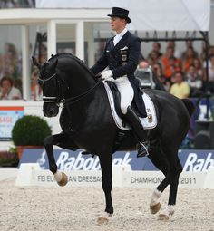 Dressage competitions consist of a series of individual tests with an increasing level of difficulty.