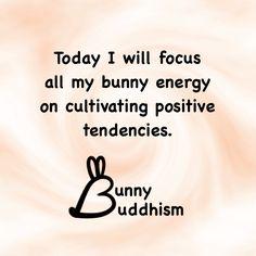 #bunnybuddhism #bunniness #bunny #quotes #quotestoliveby