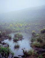 Dos aspectos de la laguna de Iguaque, en un mismo día.