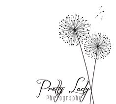 Love the dandelion design. Is it too common though?  Business Photography Logo and Watermark- Dandelion Design. $12.00, via Etsy.