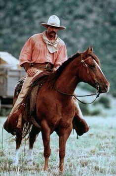 Photo of Tom Selleck on horseback Cowboy Up, Cowboy Ranch, Cowboy Horse, Cowboy And Cowgirl, Cowboy Pictures, Horse Pictures, Real Cowboys, Tom Selleck, Western Movies