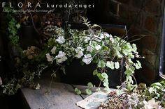 寄せ植え フローラのガーデニング・園芸作業日記-2ページ目