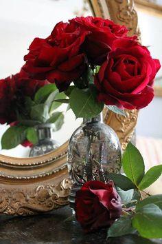 Red Roses ♡ ✦ ❤️ ●❥❥●* ❤️ ॐ ☀️☀️☀️ ✿⊱✦★ ♥ ♡༺✿ ☾♡ ♥ ♫ La-la-la Bonne vie ♪ ♥❀ ♢♦ ♡ ❊ ** Have a Nice Day! ** ❊ ღ‿ ❀♥ ~ Tues 25th Aug 2015 ~ ❤♡༻ ☆༺❀ .•` ✿⊱ ♡༻ ღ☀ᴀ ρᴇᴀcᴇғυʟ ρᴀʀᴀᴅısᴇ¸.•` ✿⊱╮