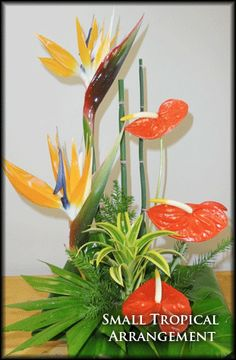 Napili Florist, The best Flowers for all occasions