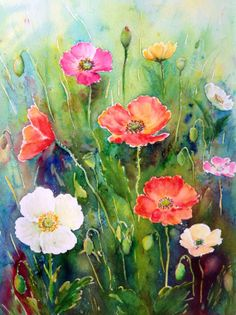 Original watercolour painting poppies  watercolor by CornerCroft, £40.00