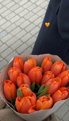 Orange Aesthetic, Flower Aesthetic, Aesthetic Food, My Flower, Pretty Flowers, Fresh Flowers, Pink Flowers, Aesthetic Pictures, Planting Flowers