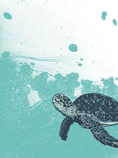 sea foam sea turtle. joseph baum.
