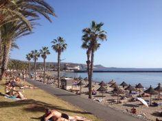 Playa del Camison Tenerife Spain