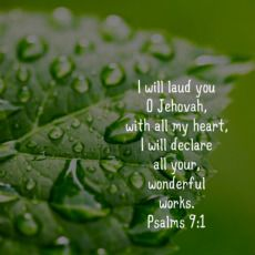 Psalms 9:1.. I will laud you my heavenly father♥