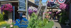 Dogs Allowed Cannon Beach - Specialty - Businesses - Cannon Beach