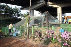 10.31 양화동 자원순환센터 동물사육장