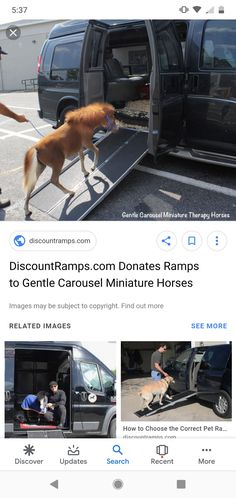 Miniature pony ramp into a van. (None of the photos are mine and I do not claim to own them.) They are just minature horse therapy inspiration. Miniature Ponies, Horse Therapy, Horse Stuff, Pony, Miniatures, Horses, Photos, Animals, Inspiration
