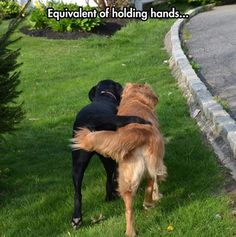 Equivalent of...