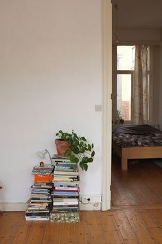 Mieke Verbijlen — pilea peperomioides + lots of nice houseplants around the house