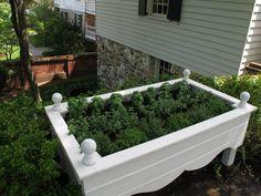Raised Herb Garden! Gorgeous!