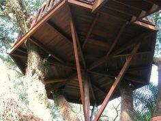 Projetos Adulto - Mirantes - Casa na Árvore