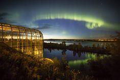 The Northern Lights season has started in Rovaniemi, Lapland, Finland. Hunting the Aurora Borealis is more than a hobby to Alex Kuznetsov. Northern Lights Trips, See The Northern Lights, Photography Tours, Nature Photography, Tromso, Lofoten, Natural Phenomena, Best Location, Aurora Borealis