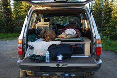 Camping in the FJ80 Land Cruiser by Steve G. Bisig, via Flickr