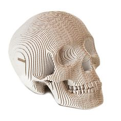 Cardboard Safari:  Animal Friendly Taxidermy. Vince Human Skull, $80, now featured on Fab.