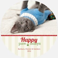 For the dog lovers: a holiday card featuring your pet! My design ...