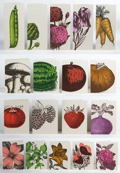 Farmer's Market cards. Letterpress prints with fruits, vegetables, and flowers! $20