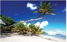 Visit Samoa: The Treasured Islands of the South Pacific