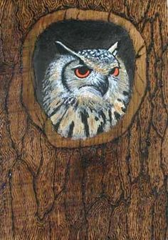 Pyrography and acrylic owl