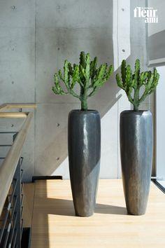 Fleur Ami Gmbh die 26 besten bilder von loft in 2019   dekoration, planters und plants
