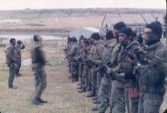 2/IV/1982 - Formación de Comandos Anfibios y Buzos Tácticos.