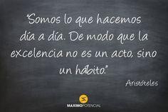 """""""Somos lo que hacemos día a día. De modo que la excelencia no es un acto, sino un hábito."""" – Aristóteles"""