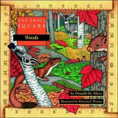 One Small Square: Woods by Donald Silver, http://www.amazon.com/gp/product/0070579334/ref=cm_sw_r_pi_alp_Nexpqb1TG651G