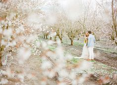 Whitney's beautiful wedding! Absolutely stunning! Magical Springtime Almond Orchard Wedding: Whitney + Zak