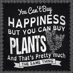 Happiness is lots of plants!
