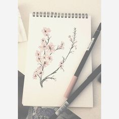 【artbykayte】さんのInstagramをピンしています。 《Cherry blossoms on a rainy night in #sketches #wip #flowers #cherryblossoms #drawing #arts_gallery #artcollective #art_spotlight #art_empire》