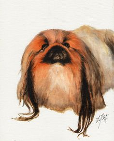 Original Oil Dog Portrait Painting PEKINGESE Artwork Art from Artist Signed Puppy