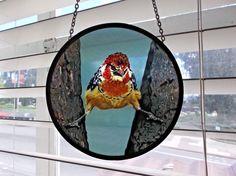 "Round Glassmasters Stained Glass Suncatcher, Alfred Brehm Barbet Bird, 6 3/8"" D #Modern"