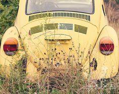 Fine Art Photograph, Vintage Yellow VW Beetle, Love Bug, VW Bug, Wildflowers, Boho, Whimsical Art, Hippie, 1960s, Retro Art, 8x10 Print