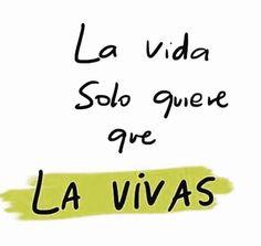 Vive!!!!