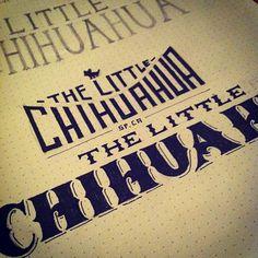 Chihuahua https://twitter.com/justlucky/