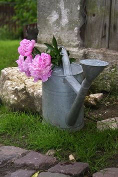 zinc and fleurs / watering cans, etc, X ღɱɧღ ||