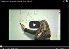 Matematica: Ghidul parintilor pentru clasa a iii-a - SuntParinte.ro