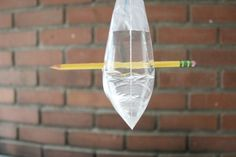 Can a pencil go through a bag with out leaking?  Fun science experiment for kids!