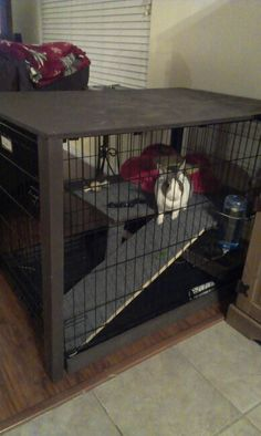 "We made this today for our bun, Jingle! Her old Hutch was just too small!  This is a large dog crate, remnant indoor/outdoor carpet, and various pieces of wood, as well as spray paint.  We wanted it to ""blend"" in with the furniture so my husband added wood to the bottom edges, the 4 corners and then a top piece to be used as more of a piece of furniture.  I want to add a lamp and some pix to the top.  $150.00.  Worth It!!  (BTW--she still gets to roam the house!)"